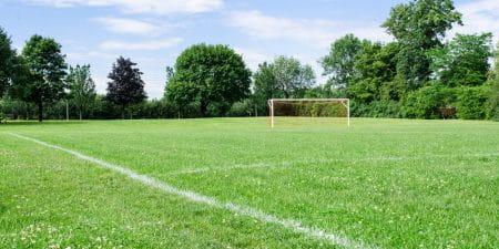 Die Regionalliga Nord und die Over/Under-Wette