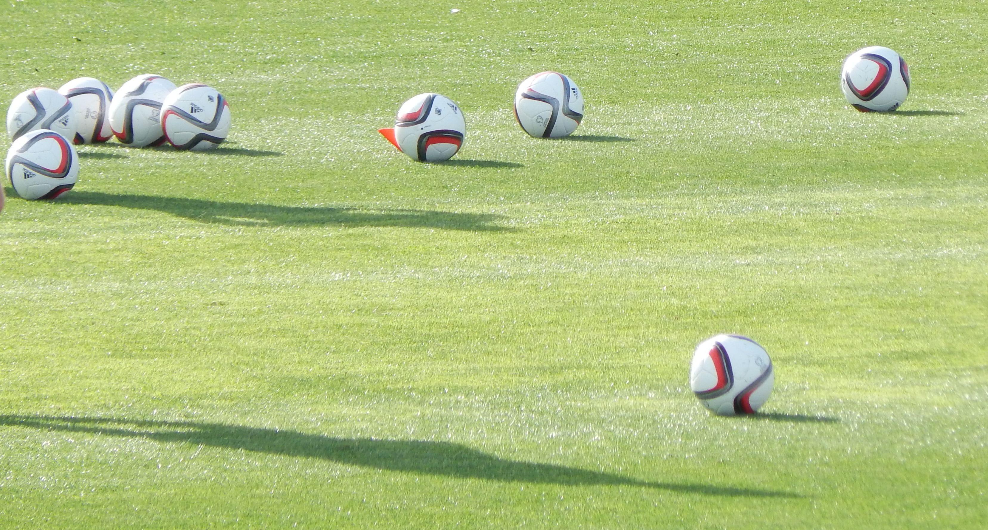 Sportwetten prognosen vom berufswetter erfahrungen
